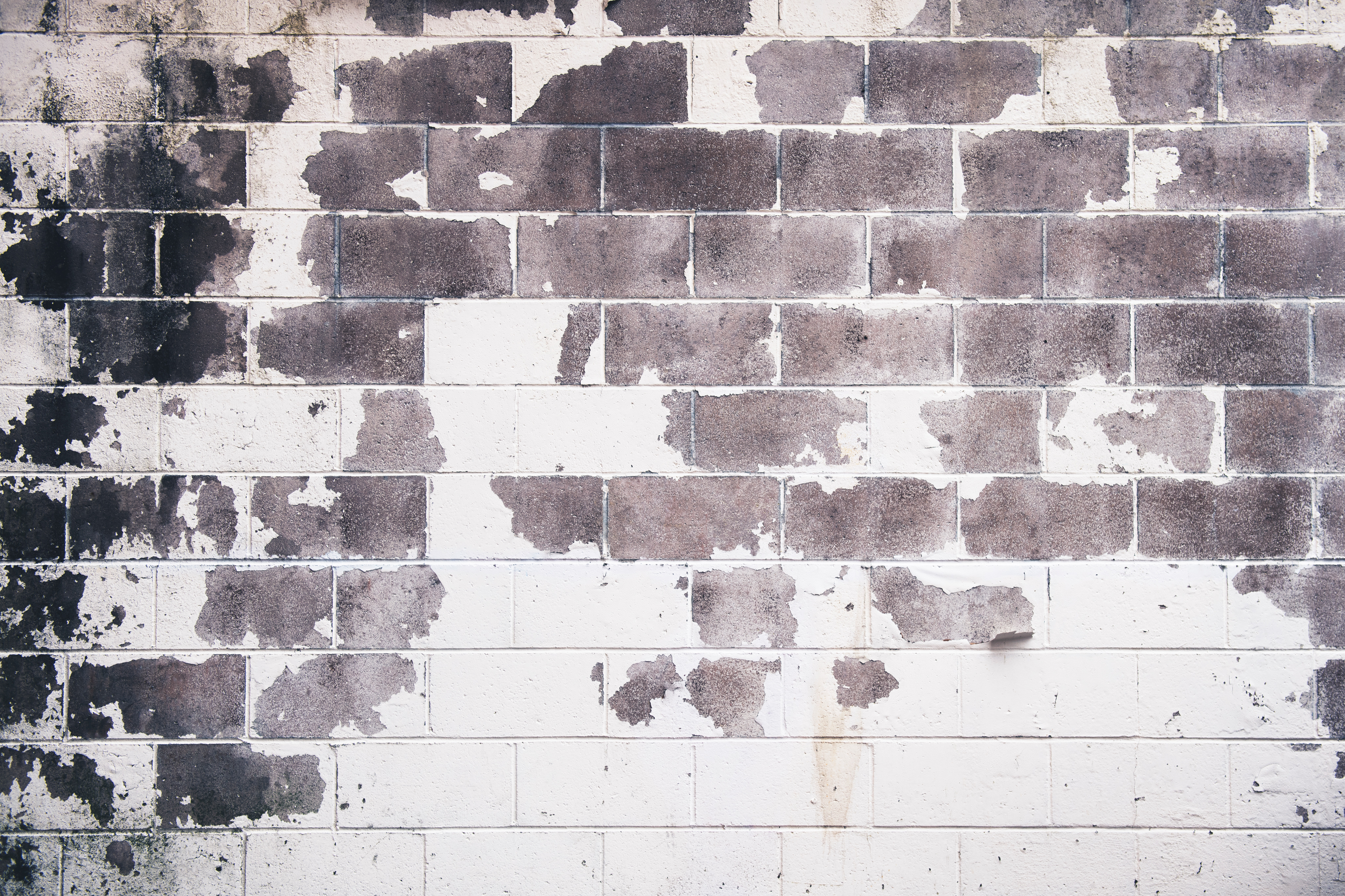 Removing Lead Based Paint on Commercial Properties
