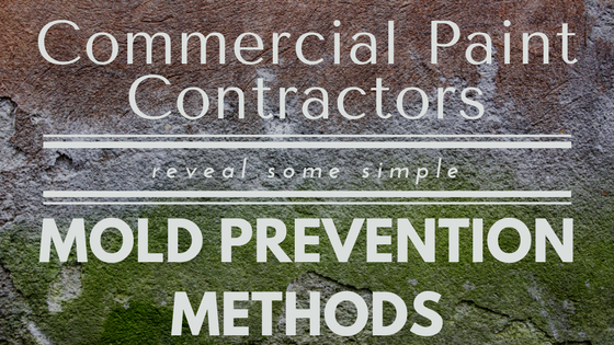 Commercial Paint Contractors Reveal Some Simple Mold Prevention Methods