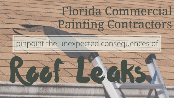 Florida Commercial Painting Contractors Pinpoint the Unexpected Consequences of Roof Leaks